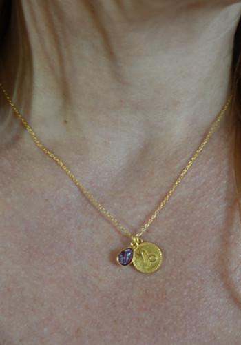 zodiac capricorn necklace with raw garnet crystal